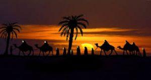 ورود کاروان امام حسین به کربلا